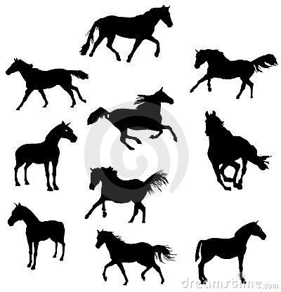 Horse shapes vector