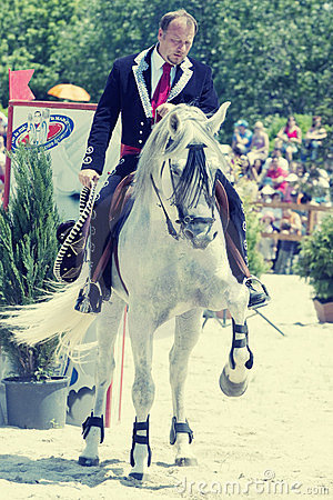 Horse show Editorial Photography