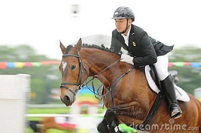 Horse Showjumping Editorial Stock Photo