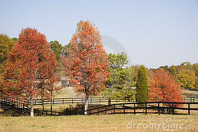Horse Stables, Fences in Autumn