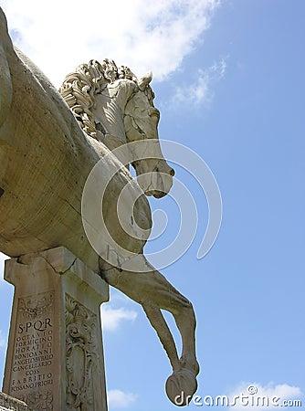 Horse statue in Rome
