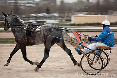 Horse trot racing on Moscow hippodrome Editorial Stock Image
