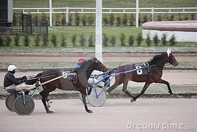 Horse trot racing Moscow hippodrome Editorial Stock Image