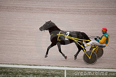 Horse trot racing on Moscow hippodrome Editorial Image
