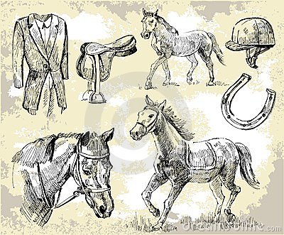 Horse vector shapes