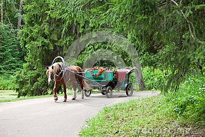 Horse vehicle in park. Pavlovsk.