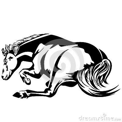 Horse wallow