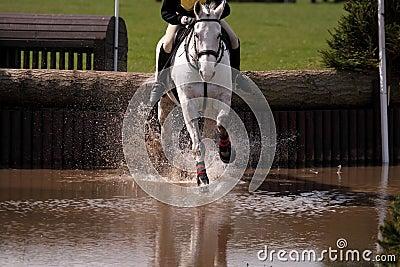 Horse at water jump 3