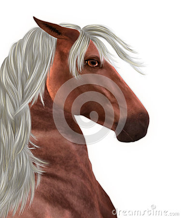 Horse with white mane