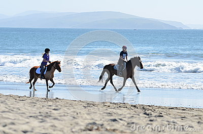 Horseback on the Beach Editorial Image