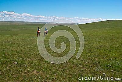 Horseback riders in grassland