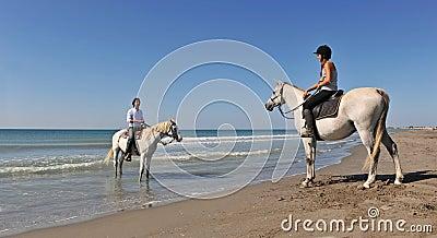 Horseback riding in holidays