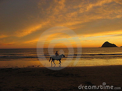 Horseback Riding in Mazatlan S