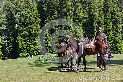 Horseman with horses Editorial Stock Photo