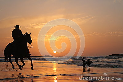 Horseman Riding