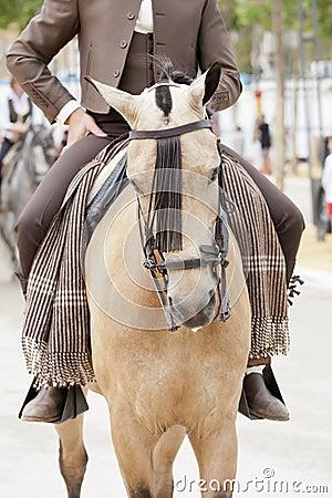 Horserman  and horse