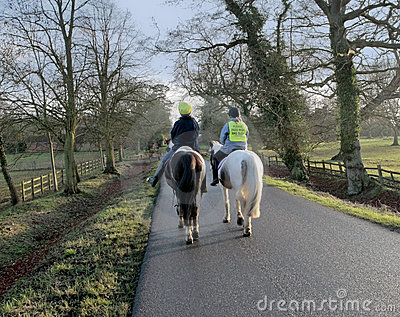 Horses country lane
