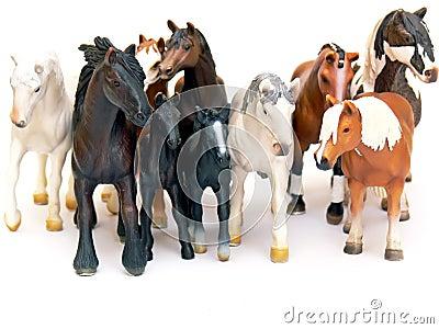 Horses group
