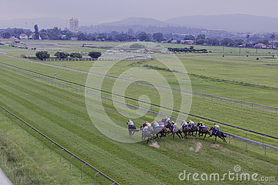 Horses Jockeys Sprint Overhead  Editorial Stock Image