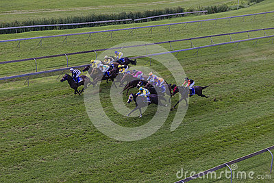 Horses Jockeys Sprint Race  Editorial Image