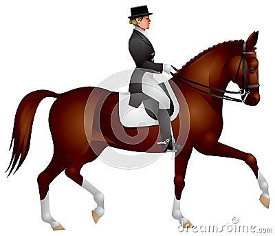 Horsewoman on a Dressage horse