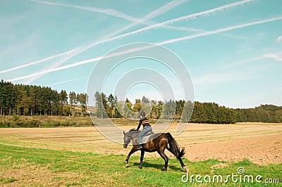 Horsewoman rides full speed.