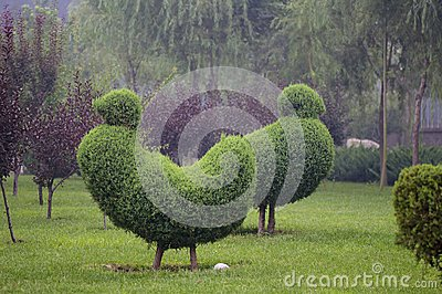 Horticultural model