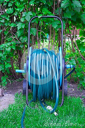Hose for watering