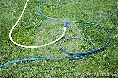 Hose for watering of lawn water