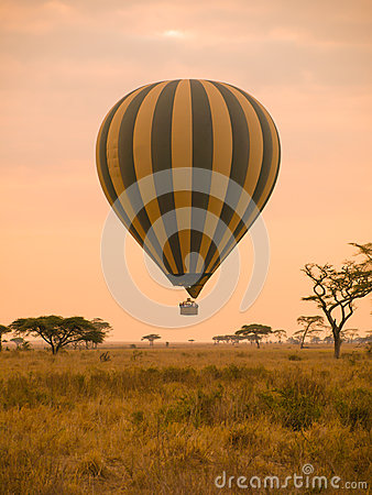 Free Hot Air Balloon In Africa Royalty Free Stock Image - 43242586