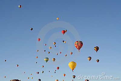 hot air balloons line the sky