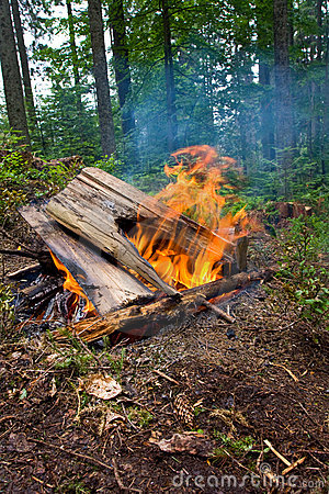 Free Hot Campfire Royalty Free Stock Photography - 11339437