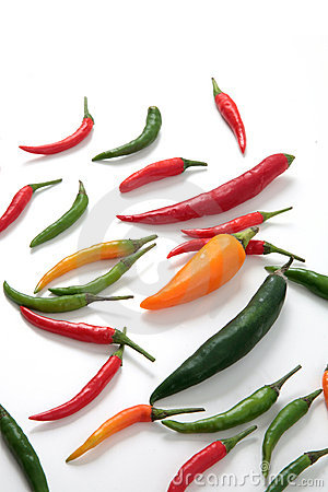 Hot chili peppers variety