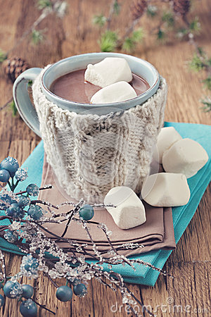 Free Hot Chocolate And Marshmallows Royalty Free Stock Images - 35465489