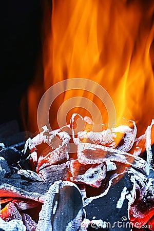 Free Hot Coals Royalty Free Stock Photo - 1272715