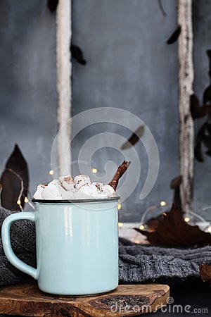 Free Hot Cocoa With Marshmallows And Cinnamon Bark Royalty Free Stock Images - 123985549