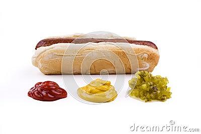 Hotdog with Condiments