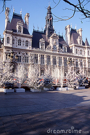 Free Hotel De Ville De Paris  Stock Photo - 4543530