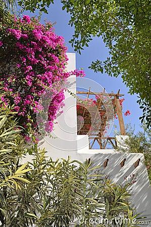 Hotel Sabena Marmara in Sharm-El-Sheikh