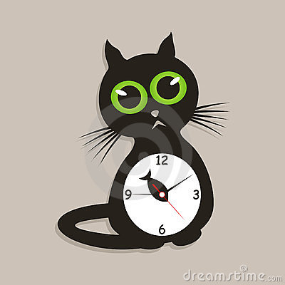 Hours a cat