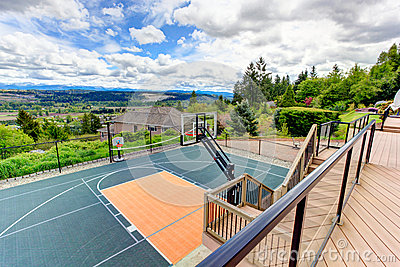 House backyard with sport court and patio area. View from walkou