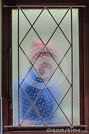 House Burglar Intruder Window Bars