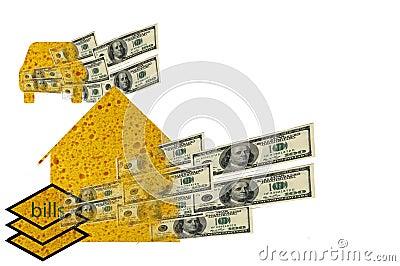House, Car, Bills Sponges Soaking up Dollars