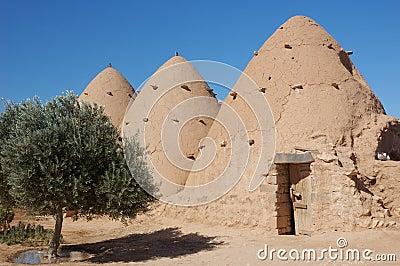 House in desert