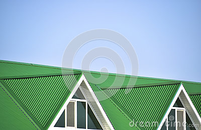 The House With Plastic Windows And A Green Roof Of