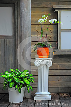 House porch with flower pots