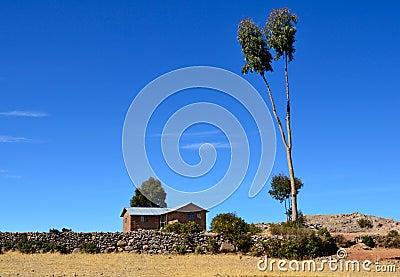 House and tree on Amantani Island