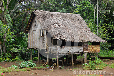 House in village Papua New Guinea