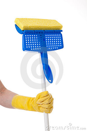 Household Chores:  Mopping