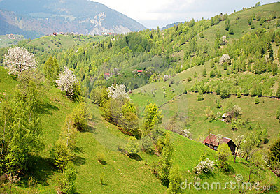 Houses on beautiful hills